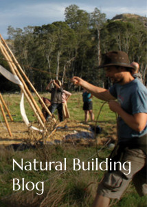 natural building blog button