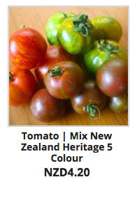Recommended_Seeds_Tomato_Miz_NZ_Heritage_5_Colour