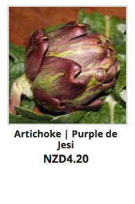 Recommended_Seeds_Artichoke