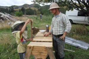 horizontal top bar hive Oliver Ace (8) can manage it with a mentor ( Cody)