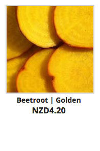 Recommended_Seeds_Beetroot_Golden