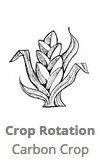 Crop_Rotation_RLC_Carbon